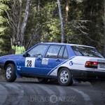 Sigtuna Rally 2013 sigtuna rallyhund rally