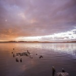 En tur till Kusten vatten solnedgång kusten havet griddd fjcruiser fj cruiser fj dragonezz cruiser