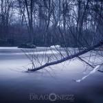 En disig dag vatten ulva kvarn fors dis dimma