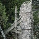 Ödetorpet i skogen övergivet ödetorp öde kvarglömt