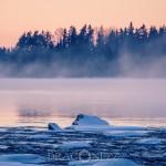 Dimmig kväll vatten solnedgång snölandskap landskap kväll is dis dimma