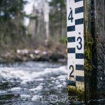 En plats i skogen vatten tjärn skog sjö rogivande rastplats lugn