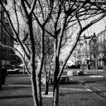 Umeå umeå svartvitt street mimer hotell elit blackandwhite