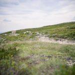 Semester Idre stuga skog semester ren idre grövelsjön fors